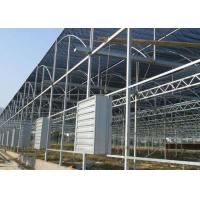 Quality Hot Dip Galvanized Steel Greenhouse Venlo Type For Farming Planting for sale