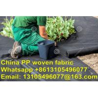 Quality 2017 high quality pp ground cover 100% virgin material 100g 3 years service life or 5 years life for sale
