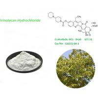 Quality CAS 136572-09-3 Irinotecan Hydrochloride White Powder Used In Medicinal for sale