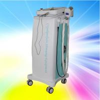 Quality Multifunction Vacuum Cryolipolysis Slimming Machine AC 220V for Beauty Clinic for sale