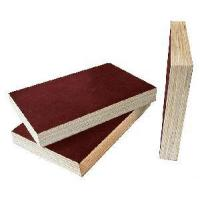 Quality Plywood with Film Faced for sale