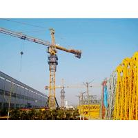 Quality QTZ40 brand new Tower Crane for sale