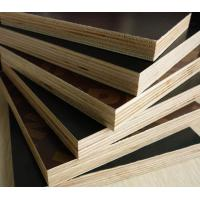 Quality film faced plywood price for sale