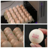 Original Egg Print Silver Head For Inkjet Printer One Year Warranty for sale