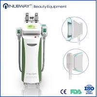 China Newest Cryolipolysis lipo slimming body sculpting fat removal machine on sale