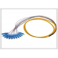 Quality 24 Core PLC Optical Fiber Pigtail Fiber Optic Cable Sc / Mu / E2000 Connector for sale