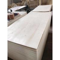 China Full poplar veneer plywood with fsc certificate on sale