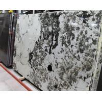 Quality Elegant Aspen White Granite Stone Slab Countertop Stone Vanity Tops for sale