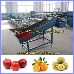 Quality kiwi fruit grading machine, orange sorting machine, apple weigher, apple sorter for sale