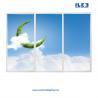Buy cheap Led panelen, Led frames, Fotoplafond  framelight, Edgelight, textielframes. Goedkoop door eigen productie from wholesalers