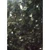 Emerald Green / Star Green Granite Stone Floor Tiles Big Slabs Granite Tiles For Bathroom Floor for sale