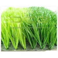 Buy Football Field C Shape Synthetic Grass Carpet 11000Dtex Fire Resistance Anti UV at wholesale prices