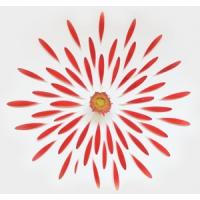 Quality abstract flower painting interior wall picture for sale