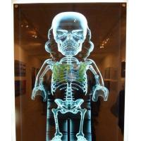 2014 best seller Discount Medical x-ray film with CE approved-MSLMF01