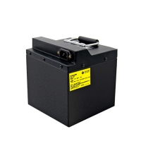 Quality 158x180x205MM 48V 20Ah 960Wh Lithium Power Pack for sale