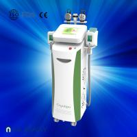 Buy Fat dissolving cryolipolysis machine / vacuum slimming beauty machine with Bottom Price at wholesale prices