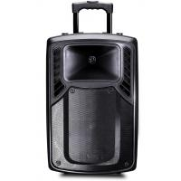 Quality Rechargeable Plastic Portable Trolley Speakers , Portable Active PA Speaker for sale