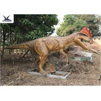 Quality Realistic Silicone Life Size Model Dinosaurs , Forest Dinosaur Garden Ornaments for sale