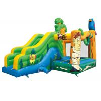 China New bird castle kids indoor jumping house party renting inflatable jumper castle with slide on sale