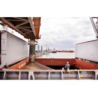Quality Approved 3rd Party Inspection Services , 3rd Party Inspection Onboard Documentation for sale
