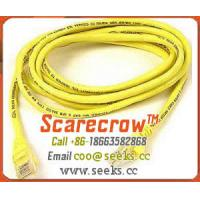 Quality Scarecrow™ PATCH10 Patch Cord CAT5E 10FT for sale