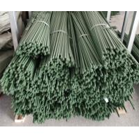 Quality Durable Plant Garden Support Green PE Coated Garden Stake for sale