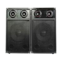 Quality Professional Lightweight Portable Bluetooth PA Speakers System For Outdoor Dancing for sale
