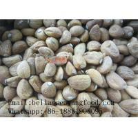 Quality Chinese factory price Dehydrated Garlic powder/flakes/granular for sale