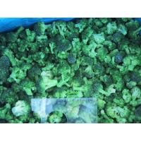 Buy cheap Frozen Broccoli IQF from wholesalers