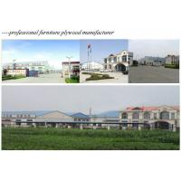 Shandong Farrandly Wood Industry Co., Ltd