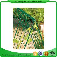 "Quality Deluxe Garden Plant Trellis For Cucumbers , Steel Cucumber Garden Trellis Each side is 32"" W x 48"" H for sale"