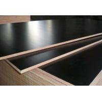 Quality Black Color Phenolic Film Faced Plywood 12mm - 18mm Thickness Environmental Friendly for sale