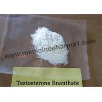 Quality 99% Purity Testosterone enanthate / Test Enan Test E 315-37-7 for For Bulking for sale
