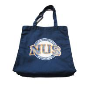 Quality 8oz Travel Plain Canvas Tote Bags / Stylish Womens Tote Handbags for sale