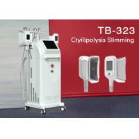 Buy cheap Fat Freeze Cryolipolysis Slimming Machine 4 Handles Belly Fat Removal Machine 1800W from wholesalers