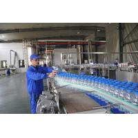 Quality Custom Small Scale Water Bottling Plant , Fully Automatic Linear Filling Machine for sale