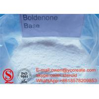 Quality Boldenone Base Cutting Cycle Muscle Building Steroids Raw Boldenone Without Ester for sale
