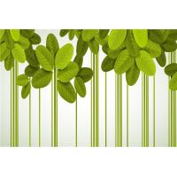 Quality Green Leaf Bamboo Fiber Waterproof Wall Panels For Bathrooms / Living Room for sale