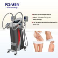 Quality CE Cool Tech Cryolipolysis Fat Freeze Slimming Machine For Weight Loss for sale