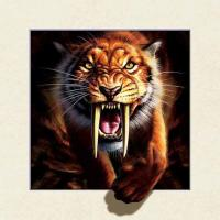 Quality Strong 5d Deep Effect Lenticular Photo Printing 40x40cm Picture Tiger / Wolf for sale