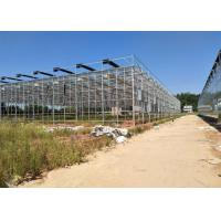 Quality Venlo Glass Greenhouse , Multi Span Greenhouse For Hydroponics System for sale