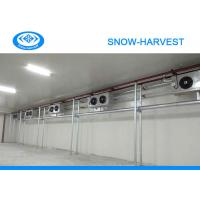 Quality Automatic Control Vegetable Cold Storage Room Great Water Absorption for sale