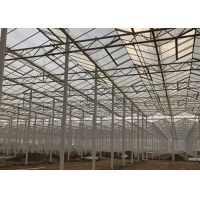 Quality Sided Ventilated Cooling Pad Multi Span Pc Sheet Greenhouse for sale