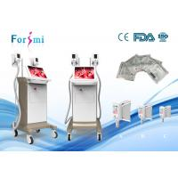 Quality Factory price beauty salon device extreme body shaping beauty cryolipolysis slimming machine for sale
