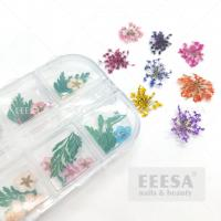 Quality 12 Colors 3D Nail Art Decorations 3D Dry Flower Leaf Real Dried Flower Natural Floral Stickers for sale