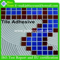 Tile Adhesive factory