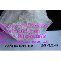 Quality 99%Min Purity white crystalline Steroids  Testosterones Base / 58-22-0 for Bodybuilding for sale