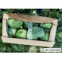 Quality Clean Healthy Raw Green Cabbage , Small Round Cabbage No Pollution for sale