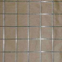 Quality 1/4-inch Electro-galvanized Welded Wire Mesh for sale