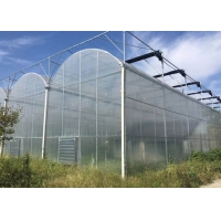 Quality Agricultural Multi Span 10m 200 Micron Ldpe UV Film Greenhouse for sale